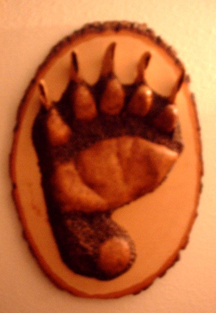 Large Brown Bear Track on Wood